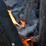 Thumbnail: wood on fire