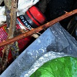TN: Litter amongst brambles
