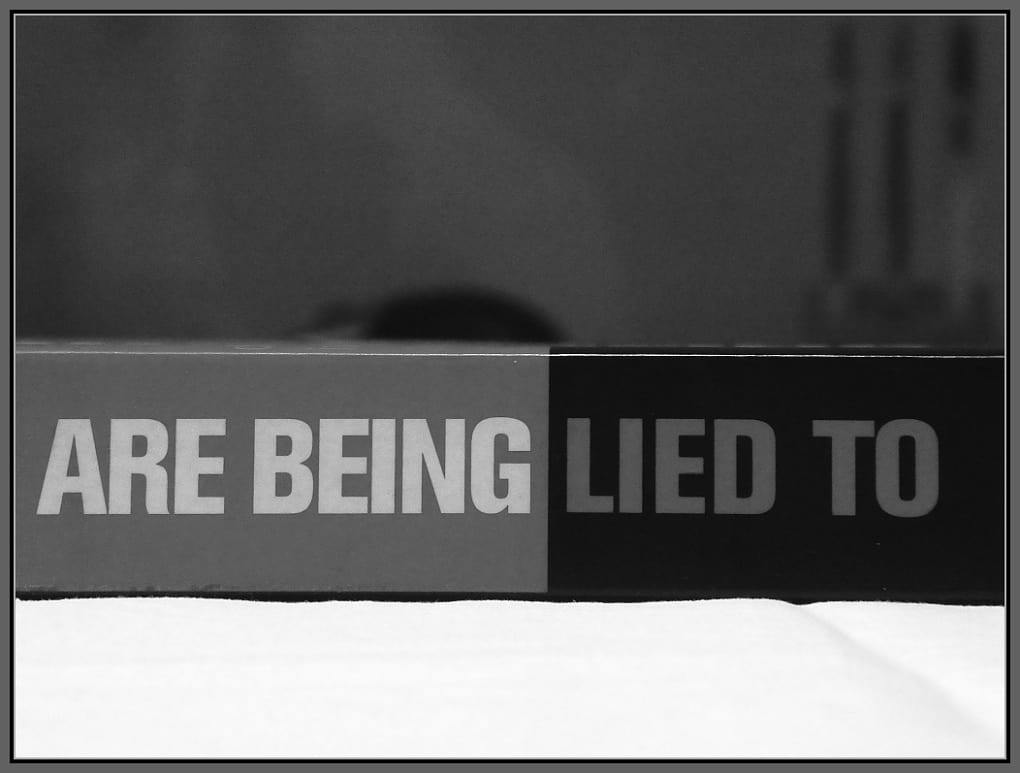 Book Cover Side - You are being lied to