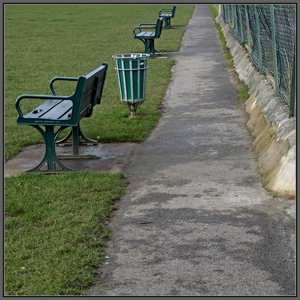 Three empty park benches